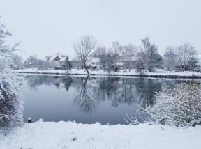 rybník v zimě